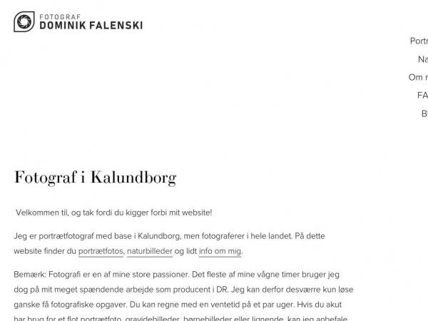 dominikfalenski.dk