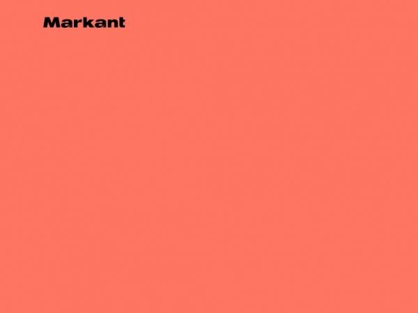 markant-reklamebureau.dk