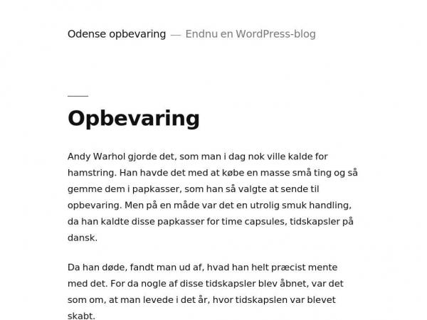 odense-opbevaring.dk